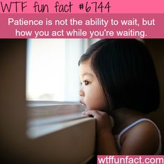 Patience - WTF fun fact