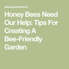 Honey Bees Need Our Help: Tips For Creating A Bee-Friendly Garden