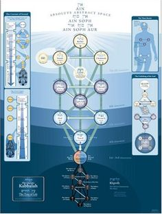 material tree of life