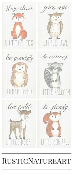 Cute little animals from Woodland Theme. Perfect to your loved little baby's nursery wall decor. Stay Clever Little Fox, Grow Wise Little Owl, Live Guardedly Little Hedgehog, Be Curious Little Raccoon, Live Wild Little Deer, Be Steady Little Squirrel. Buy these woodland wall art prints with great discount at http://www.rusticnatureart.com