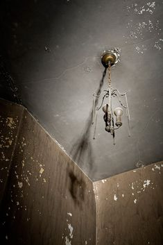 Spider - Photo of the Abandoned Worcester State Hospital