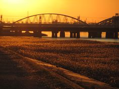Sunset of Juso-Yodogawa