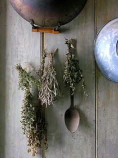 dried herbs are the easiest way to save leftover herbs, just tie them together and hang them off the kitchen wall