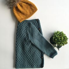Ravelry: Project Gallery for Carl's Cardigan pattern by PetiteKnit