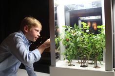 Agtech for the Masses: Using Smartphones to Grow Food