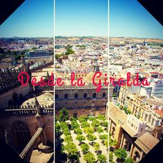 Desde la #Giralda, #Sevilla - #panorama #hd #sevillahoy