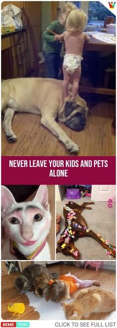 20 Reasons Why You Shouldn't Leave Your Kids and Pets Alone #kids #pets #dogs #cats #puppies #parents #parenting #humour #funnypictures #adorable #funnydogs #photos #bemethis