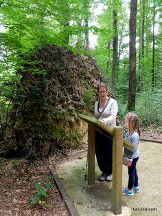 Sentier de l'Orée du bois à Senonches