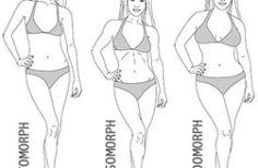 Body Type – Ectomorph, Mesomorph & Endomorp