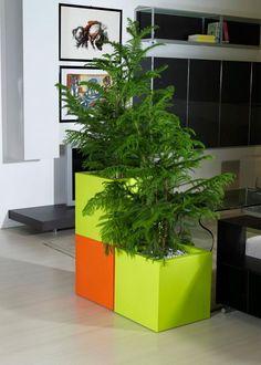 kube planter| Euro3plast