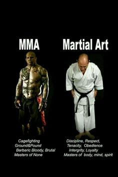Kampfsport(Fighting, Mixed Martial Arts) und Kampfkunst(Martial Arts, Budo)