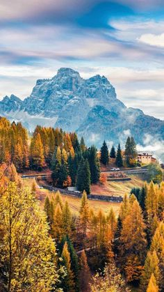 Love the autumn tree colors Landscape Photos, Landscape Photography, Nature Photography, Landscape Wallpaper, Nature Wallpaper, Mobile Wallpaper, Beautiful Places, Beautiful Pictures, Nature Aesthetic