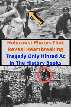 Holocaust Photos That Reveal Heartbreaking Tragedy Only Hinted At In The History Books Wtf Funny, Funny Facts, Weird Facts, Funny Jokes, Sarcasm Humor, Weird World, History Books, Laughing So Hard, Nice Tops