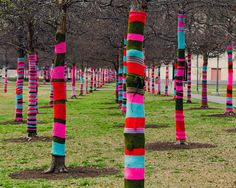 Through March 25, 2011 the trees outside of the Blanton Museum on the University of Texas at Austin campus are colorful victims of a 'Yarn Bomb'. From the Artist's website, 'Knitta Please'