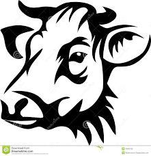 Resultado de imagen de cow face