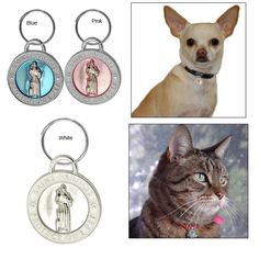 St. Francis Pet Tag from the Animal Rescue Store. Purchase of this tag funds at least 14 bowls of food for a shelter animal! Check them out!