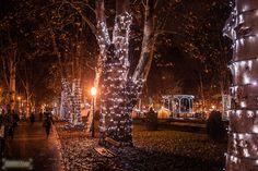 The Park Zrinjevac during winter, Zagreb | ZmlinaR Photography