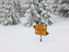 Nejkrásnější místa pro zimní sportovní aktivity   Places to go... The most beautiful winter hiking tours...  #superlifecz #winter #sports #zen #snow #apps #czechrepublic    Pavel Červený - Letos první běžky na Šumavě