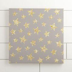 Star Sky Canvas