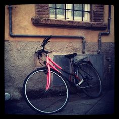Bicicletta rosa in Lucca, Toscany.
