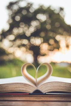 Historical fiction novels I've loved or that are currently on my reading bucket list.