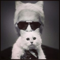 Choupette Lagerfeld Interview - Karl Lagerfeld Quotes on Cat Choupette - Harper's BAZAAR Magazine Aug, 2012 Karl Lagerfeld Choupette, Crazy Cat Lady, Crazy Cats, Fiona Ferrer, Animal Gato, International Cat Day, Son Chat, Gatos Cats, Fashion Articles