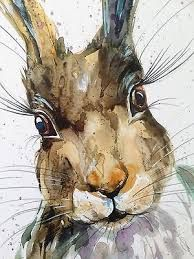 new hare sarah - Google Search