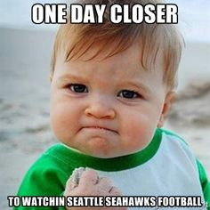 seattle seahawks memes - Google Search