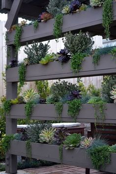 vertical planters by Living Gardens Landscape Design | via Greg Salmeri