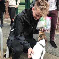 Doggo + Why Don't We = happiness Why Dont We Boys, Love My Boys, Pretty Boys, Love Of My Life, Cute Boys, My Love, Why I Love Him, Jonah Marais, Zach Herron
