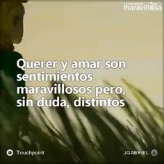 Querer y amar Querer y amar son sentimientos maravillosos pero, sin duda, distin. Sad Love, Love You, Smart Women, The Little Prince, Romantic Love Quotes, Love Messages, Spanish Quotes, Humor, Me Quotes