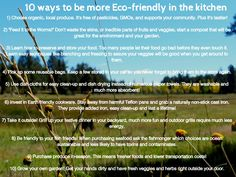 Tips for the kitchen and cooking to be more Eco-friendly!
