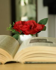 Stropi de roua #valentinesday #dragobete #iubire #aranjament #flori #artificiale #floriartificiale #decoratiuni #cadou #unicat #flowerstagram www.beatrixart.ro
