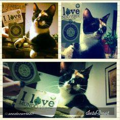 ¡@angelopez8661 estamos felices por tu participación! Y tú, ¿ Cuando compartes la foto de tu mascota y Mundo verde?