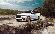 Scarica sfondi bmw x5, bmw x5m, velos, 2015, tuning, bianco crossover, oro ruote, bianco
