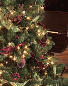 festival of trees 2014 - Best Decorated Christmas Trees 2014