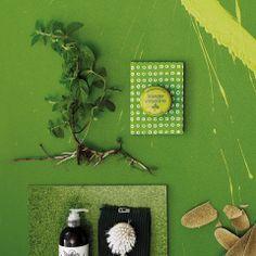 Tikkurilan Trendivärit 14-15: Vihreässä keitaassa asuu ilo