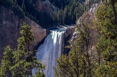 Top Five reasons to Visit Yellowstone Now · West Adventures Visit Yellowstone, Yellowstone National Park, Natural Park, Great Vacations, Waterfall, Places To Visit, Adventure, Parks, Nature