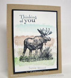 Stampin' Up!- 'Walk in the Wild'