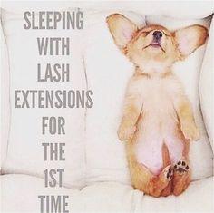 Lol so true! Get some sleep, get lash boost! Eyelash Salon, Eyelash Curler, Eyelash Extensions, Hair Extensions, Best Lashes, Fake Lashes, False Eyelashes, Ardell Eyelashes, Artificial Eyelashes