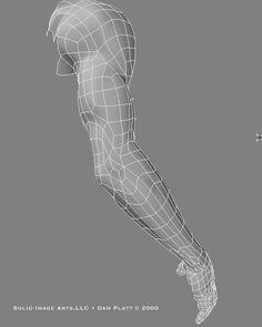 Wireframe arm showing tricep and forearm - http://www.danplatt.com/