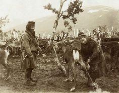 Sami Swedish nomad Sami 1880 - 1920