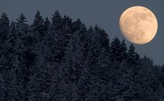 Moon over German Forest