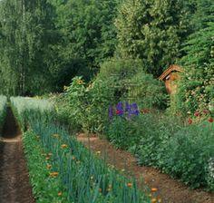 Ecocert Organic Certified Garden www.metamourskincare.com