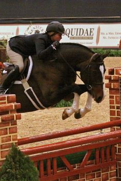 Victoria Colvin and Inclusive led the Second Year Green Working Hunters at the Alltech National Horse Show.