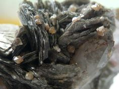 "Zinnwaldite, KLiFeAl(AlSi3)O10(OH,F)2, Scheelite and quartz, Mine "" United hybrid box Zinnwald "", Erzgebirge, Czec republic. Fov 1,3 cm. Collection : erzgebirge65 Copyright : erzgebirge65"