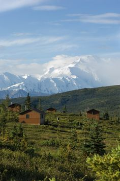 Camp Denali Lodge | One of the Premiere Wilderness Lodges in Alaska