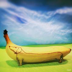 Dachshund Banana Art Print