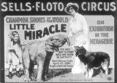 Sells & Floto Circus Poster.