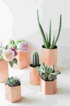 DIY Metallic Geometric Planters